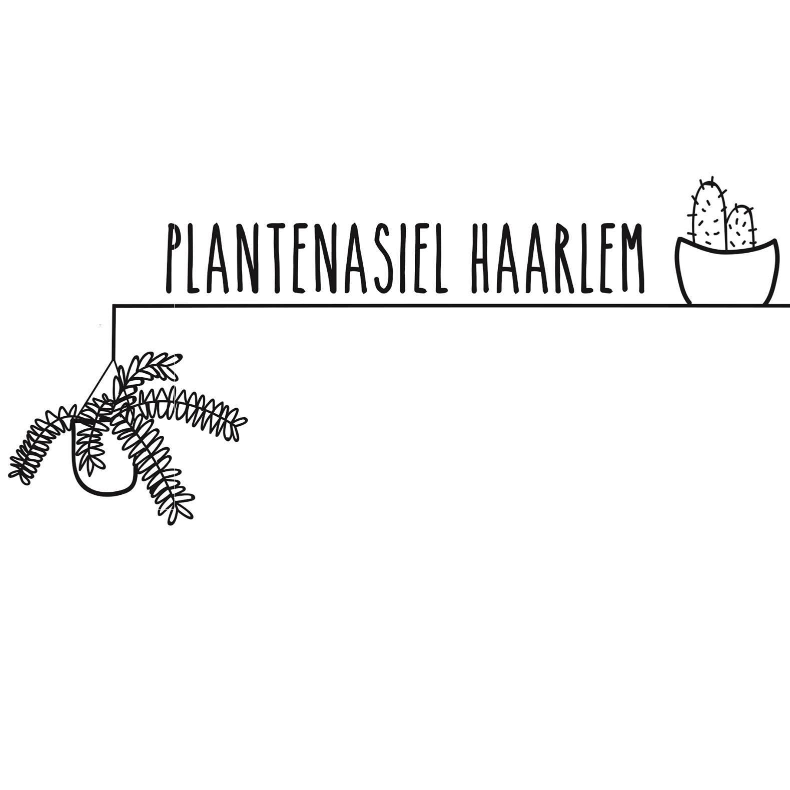 Plantenasiel Haarlem